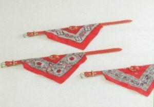 Halsband + rood doekje