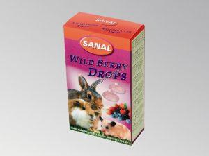Sanal bosvruchten drops voor knaagdieren