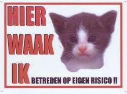 Waakbord Kat Kitten-0