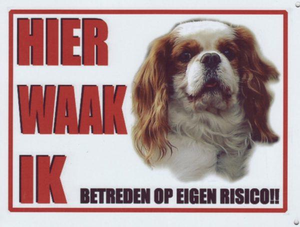 Waakbord Cavalier King Charles blenheim-0