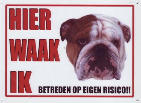 Waakbord Engelse Bulldog bruin/wit-0