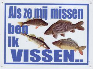 Hengelsport: Als ze me missen ben ik vissen-0