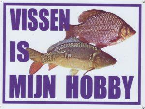 Hengelsport: Karpervissen is mijn hobby-0