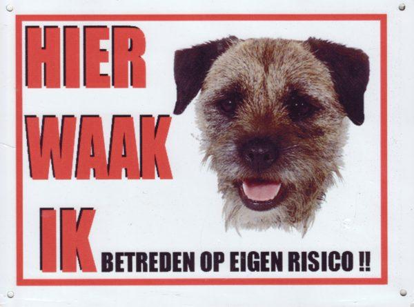 Waakbord Border Terrier-0