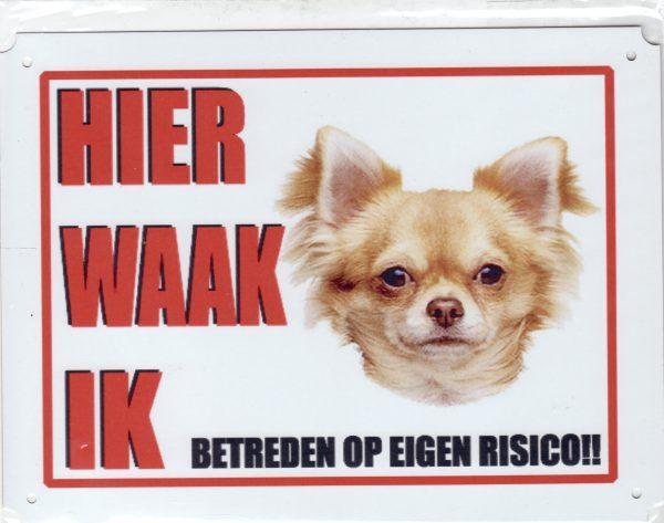 Waakbord Chihuahua 2 blond langhaar-0