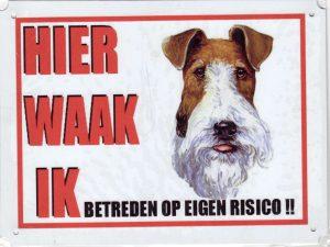 Waakbord Fox terrier-0