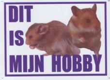 Dit is mijn hobby bord met 2 hamsters-0