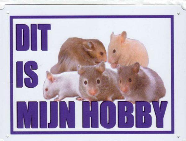 Dit is mijn hobby bord met Hamsters divers-0