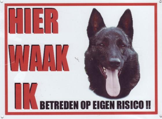 Waakbord Hollandse Herder korthaar-0