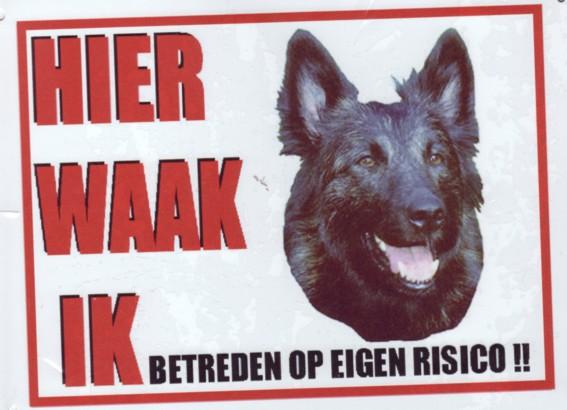 Waakbord Hollandse Herder langhaar-0