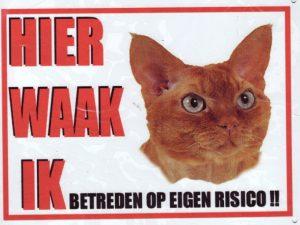 Waakbord Kat rood-0