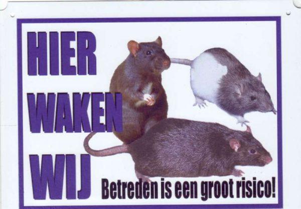 Waakbord Ratten-0