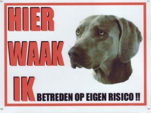 Waakbord Weimaraner-0