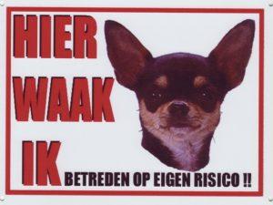 Waakbord Chihuahua 4 donker korthaar-0