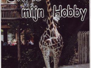 Dit is mijn hobby bord met Giraffe-0