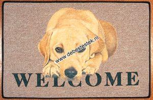 Deurmat Labrador Blond-0