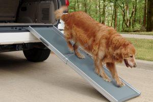PetRamp deluxe – hondenloopplank-0