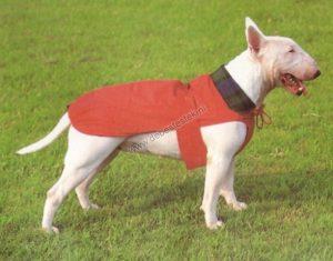 regenjas voor de hond