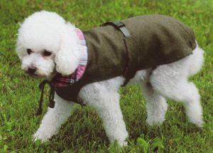 Hondenjas Sofia 50 cm-0
