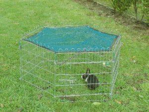 Afdeknet voor konijnenren