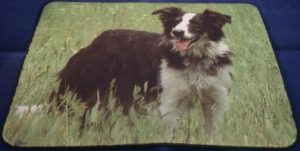 Muismat Border Collie