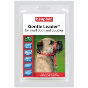 Gentle Leader voor kleine honden-0