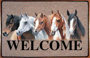 Deurmat Paarden crazy horses-0