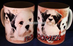 Mok Boomer-0