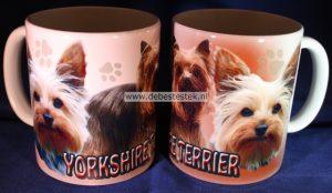 Mok Yorkshire Terrier-0