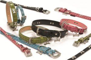 Halsbanden en lijnen Luxo
