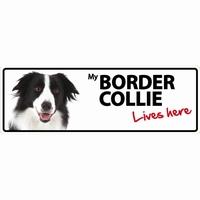 OD Waakbord Border Collie langwerpig-0