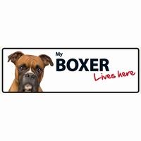 OD Waakbord Boxer langwerpig-0