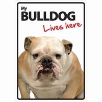 OD Waakbord Bulldog lives here-0