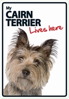 OD Waakbord Cairn Terrier lives here-0