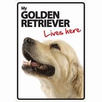 OD Waakbord Golden Retriever lives here -0
