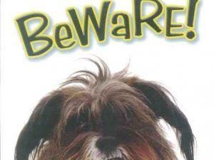 OD Waakbord Postman Beware-0