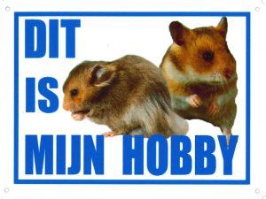 hobby bord hamsters