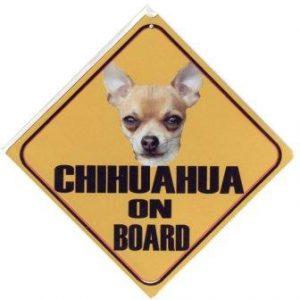 chihuahua korthaar autobord