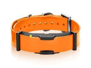 Dogtra 800 ARC extra halsband-0