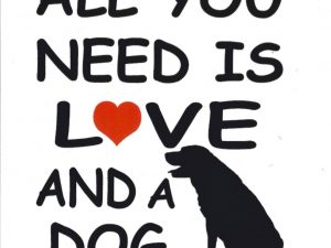 all you need is love and a dog wit